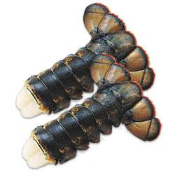 Click to read more about Raw Frozen Lobster Tails - Paturel Brand
